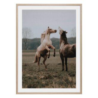 Hoppande häst