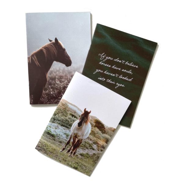 anteckningsböcker 3pack hästmotiv