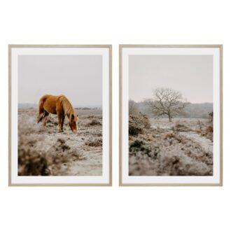 2 pack poster med häst