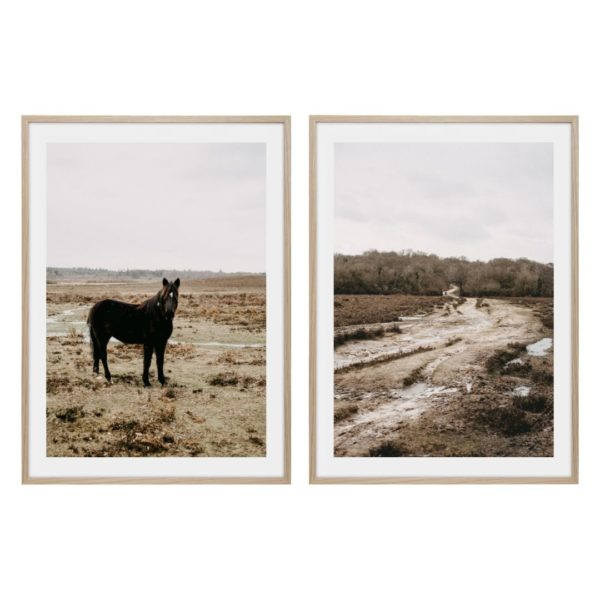 Svart häst i dimman