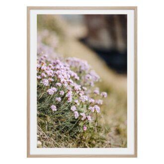 lila små små blommor